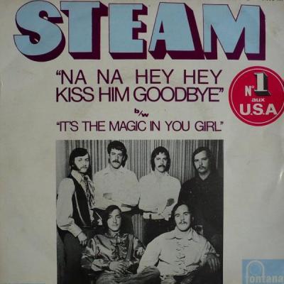 Na Na Na Na Hey Hey (Goodbye) – Steam