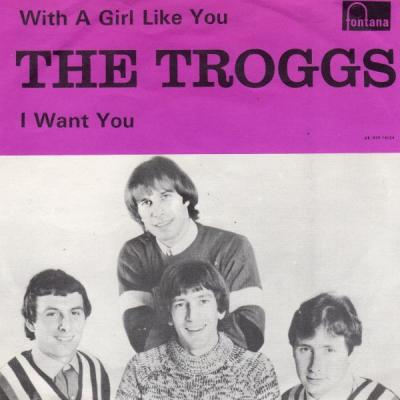With a Girl Like You – The Troggs